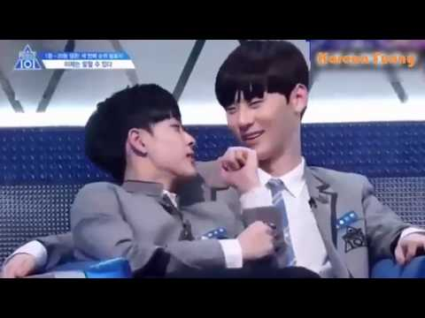 Wanna One Funny & Cute Moments