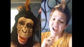 Funny Tik Tok Ironic Memes Compilation V17 Best Tik Tok Trolls