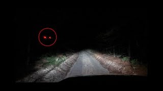 (CLINTON ROAD) We went further down the trail on clinton road... Something attacked us...