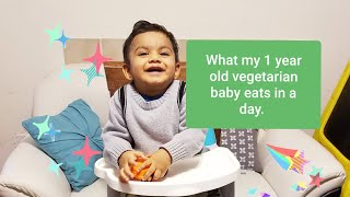 What my 1 year old vegetarian baby eats in a day.