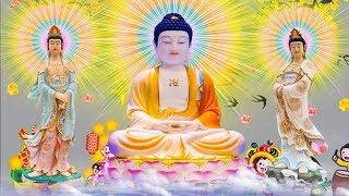 15/16/17 Âm Lịch Nghe Kinh Phật Tĩnh Lặng Tiêu Tan Phiền Não Tài Lộc Phát Sanh