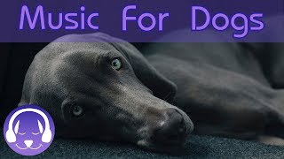How to Calm Your Dog! 12 Hours of Relaxing Music for Dogs, Long Playlist to Get Your Dog to Sleep!🐶