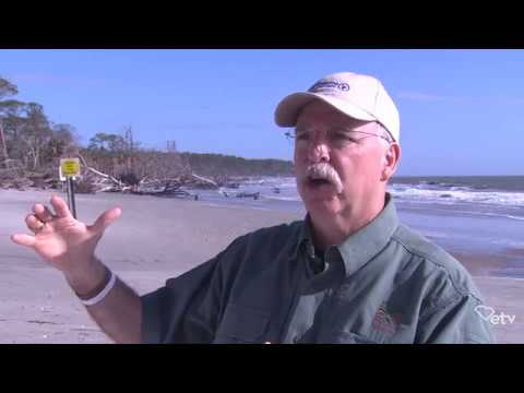 screenshot of youtube video titled Phil Gaines - Full Interview | Sea Change
