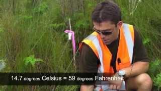 Field Studies in New Zealand: Nutrient Impacts on Wetlands