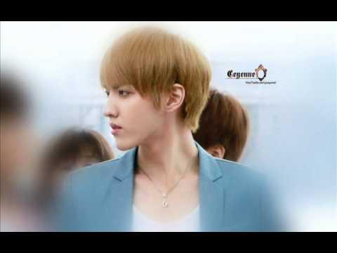 [OPV] คนในฝัน - Kris Exo
