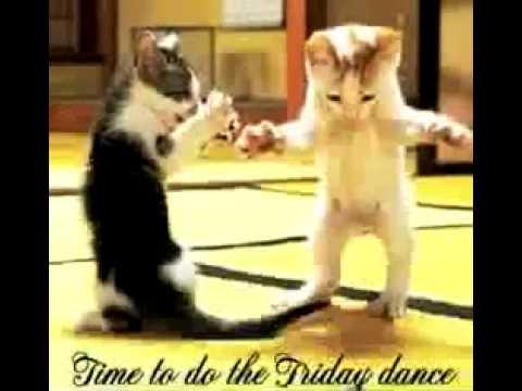 Happy Friday Videos