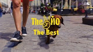 The VYO - The Best