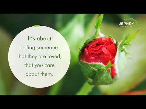 Jephry Floral Studio – An Award-winning Providence Florist