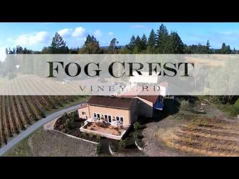 Experience the Tasting Room at Fog Crest Vineyard
