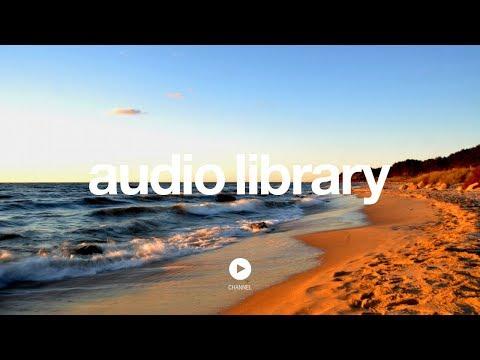 Venice Beach - Topher Mohr and Alex Elena (No Copyright Music)
