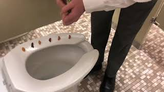 Eating gummy bears off of a toilet seat