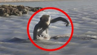 Top 10 Scary Things That Surfaced From The Sea!