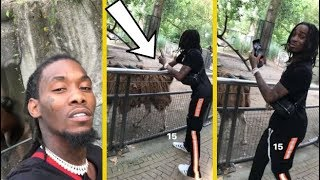 "Offset Migos ""Bets $15K Quavo Won't Touch A Llama"""