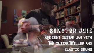 Ambient Guitar Jam Using Elastic Drums and the Guitar Triller