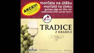 Morčata na útěku - Strastiplná cesta Dilda Pytlíka - Dovnitř a zas zpátky [Tradice z krabice] (2013)