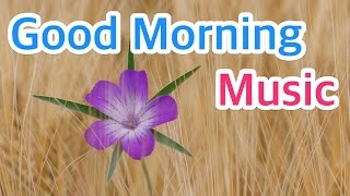 1 HOUR of Good Morning Guitar Instrumental Music to Wake Up with Bird Singing