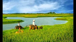 Canh Dep Viet Nam 2015 -du lich qua hinh anh 2015
