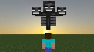 I fought The Wither in Superflat Survival