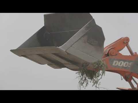 Roll-Off Dumpster Rental Service | Piratedumpsters.com