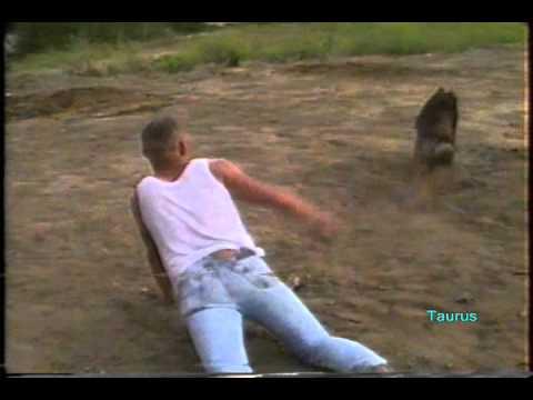 free gay cowboy wrestling