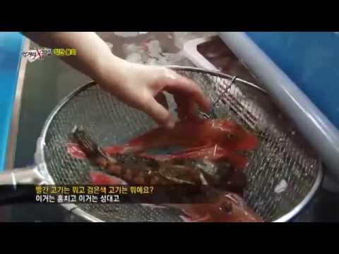 자연산 생선을 쓰는 착한 물회 착한식당, 단골 부르는 비법은?_채널A_먹거리X파일 123회