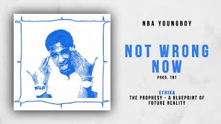 nba-youngboy-not-wrong-now-ethika-the-prophesy.jpg