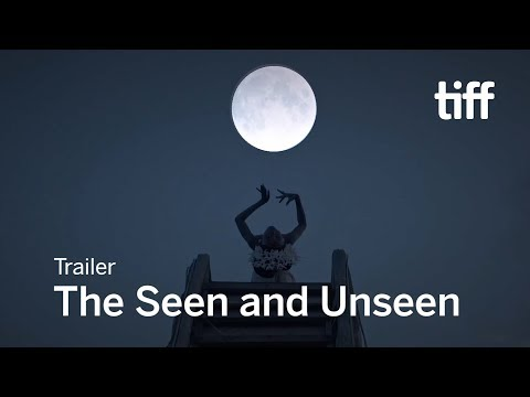 The Seen and Unseen'