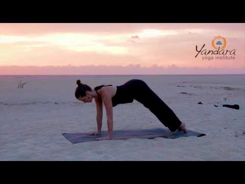 Vinyasa by Allison Eaton