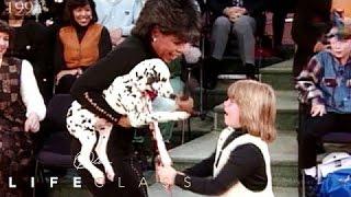 The Healing Power of a Puppy | Oprah's Lifeclass | Oprah Winfrey Network