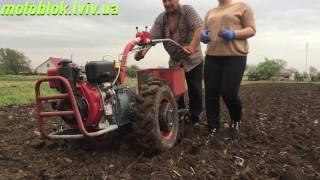 Посадка картоплі Мотоблоком Мотор Січ МБ-6ДЕ з картоплесаджалкою