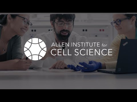 Impressions | Allen Institute for Cell Science