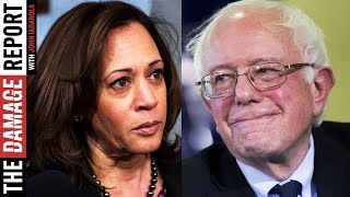 African Americans Support Bernie Over Kamala Harris By Large Margin