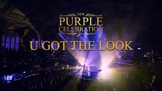U Got The Look | New Purple Celebration Live