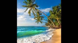 Ocean Waves Deep Sleep Relaxation & Meditation (3 Hrs)