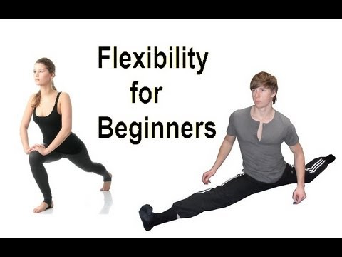 flexible in 5 minutes daily beginner stretching routine