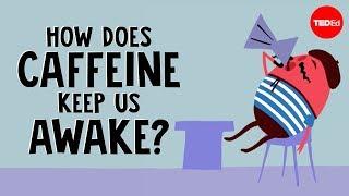 How does caffeine keep us awake? - Hanan Qasim