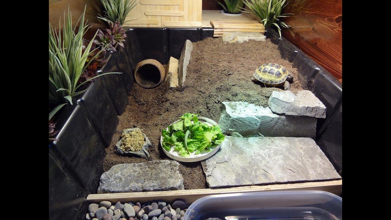 New Tortoise Table For Russian Tortoise Youtube