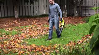Video: 18V ONE+™ LITHIUM+™ String Trimmer/Edger & Jet Fan Blower with 4Ah Battery & Charger