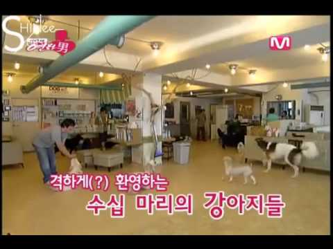 SHINee-Taemin's first date