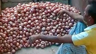 Steep rise in onion prices attributed to crop loss..
