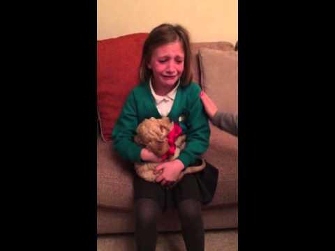 New Puppy Christmas Magic 🎄🌟🎄