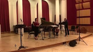Carnegie Mellon Baroque Ensemble - J.S. Bach:  Seufzer, Thränen, Kummer, Noth from Cantata BWV 21