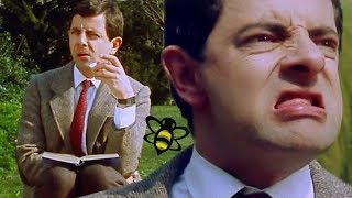 Bumble BEAN   Mr Bean Full Episodes   Mr Bean Official