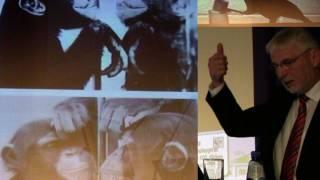 Tierische Intelligenz: Lernverhalten und Werkzeuggebrauch | Wie einzigartig ist der Mensch?