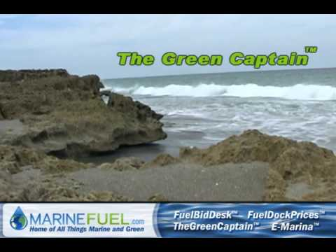 Carbon Offsets - Marine Carbon Offsets