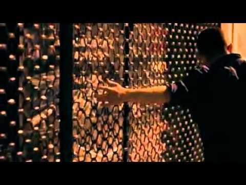 Thalía - Manías (Vídeo Ganador)