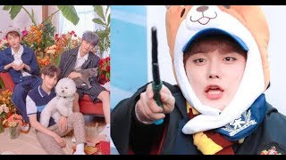 Fans Barked At TXT And It Was The Funniest Thing Ever   'Cat & Dog' Jacket shooting sketch