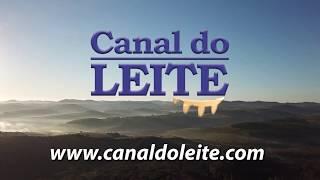 Canal do Leite - O novo portal da pecuária leiteira!