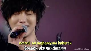 The More I Love You - Yesung [lirik/indo sub]