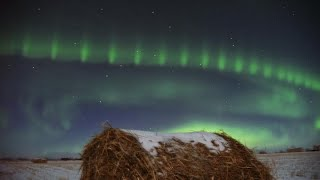 NASA Spacecraft Uncover Mystery Behind Auroral Beads
